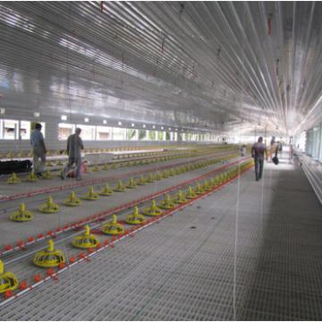 Best selling leading automatic poultry farm for chicken house/poultry house