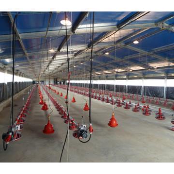 Prefab cheap modern chicken house with full equipment factory cn