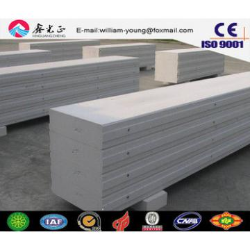 Building materials B05 AAC/ALC wall and roof panel